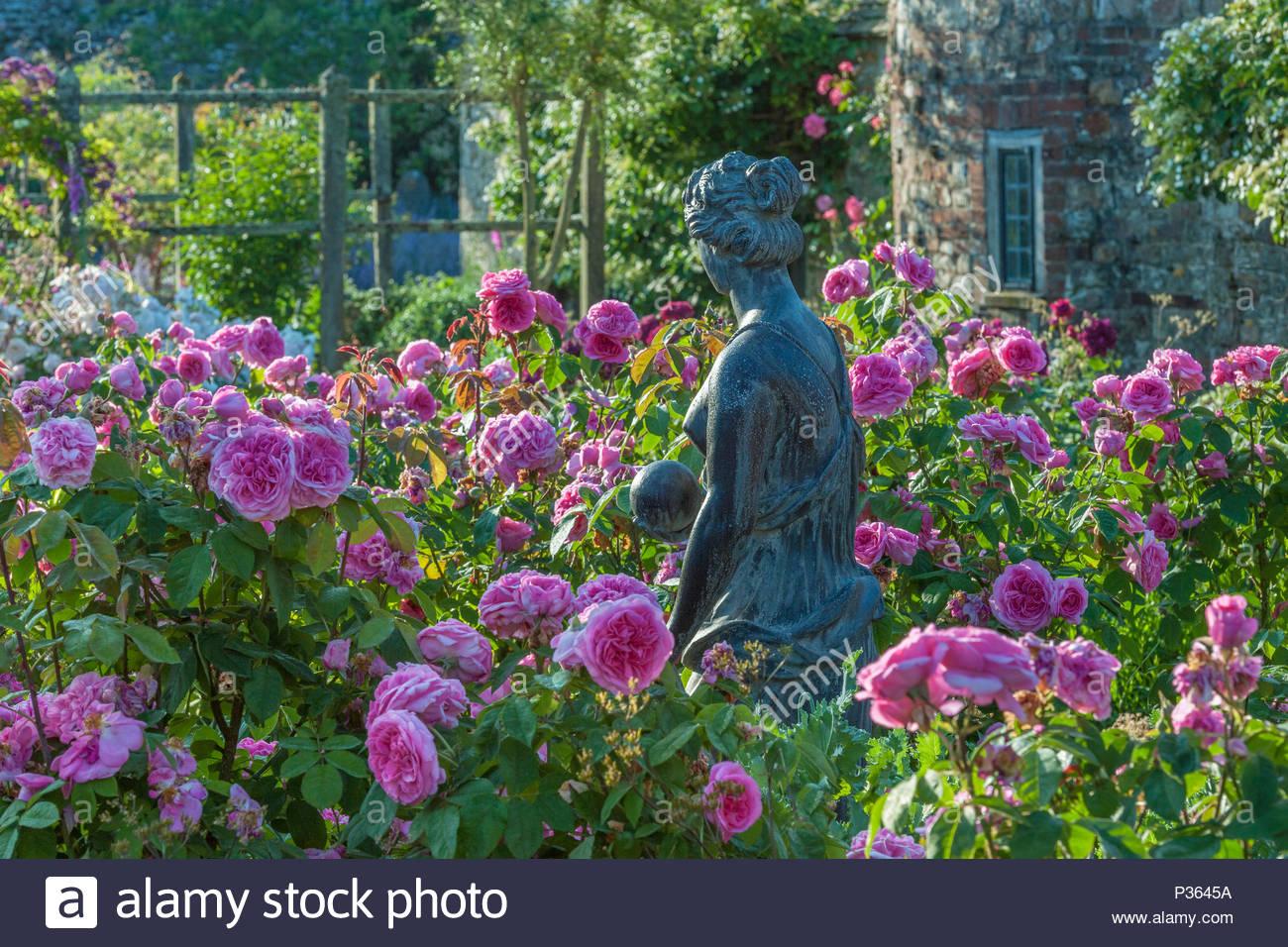 Light rose garden questo giardino di rose luminose ogni sera si