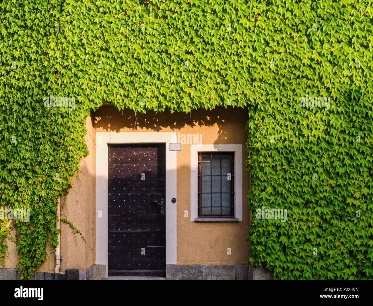 Dimensioni Porta Ingresso Casa casa in legno vecchio porta di ingresso nella parete di