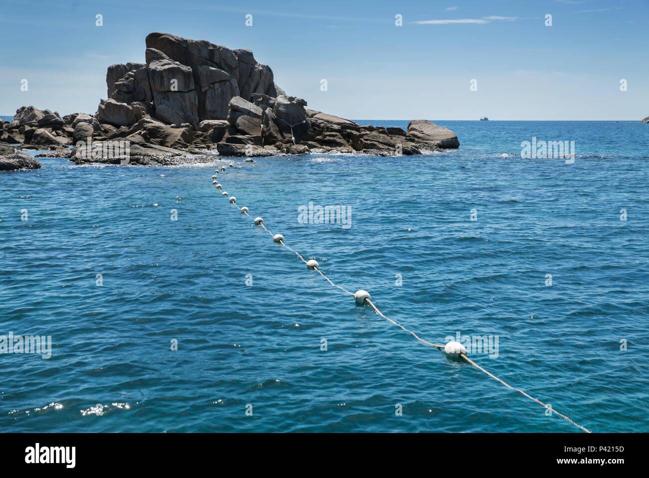 Floating Boa Bianca Sullo Sfondo Del Mare Zona Di Sicurezza Per