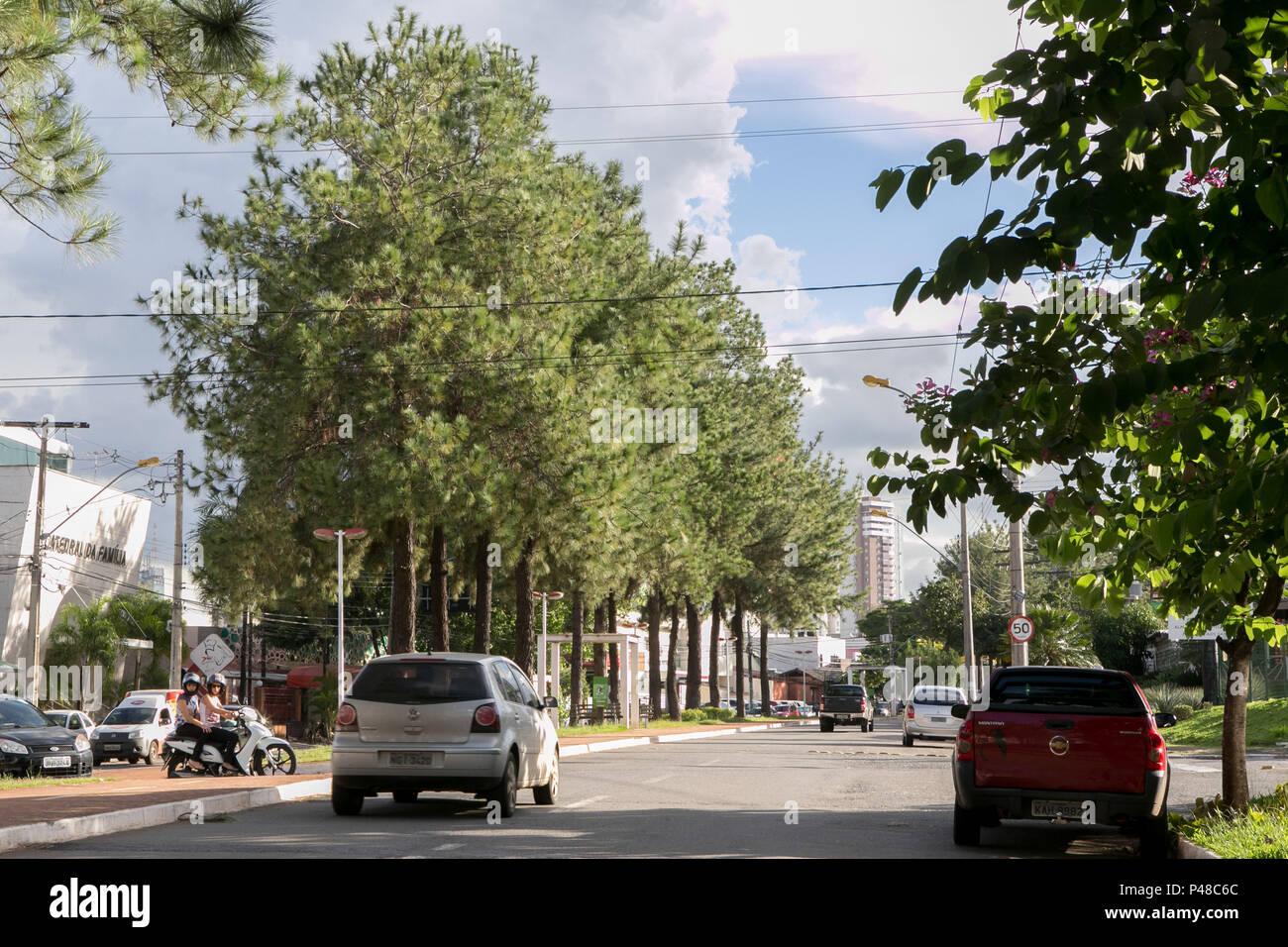 Goiânia, GO - 10.04.2015: RUA ARBORIZADA - Alameda Ricardo Paranhos, Setor Marista. (Foto: Murilo Bastos / Fotoarena) Foto Stock