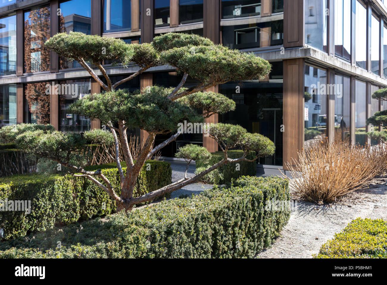 241/5000 giardino giapponese in Biberach, Germania Immagini Stock