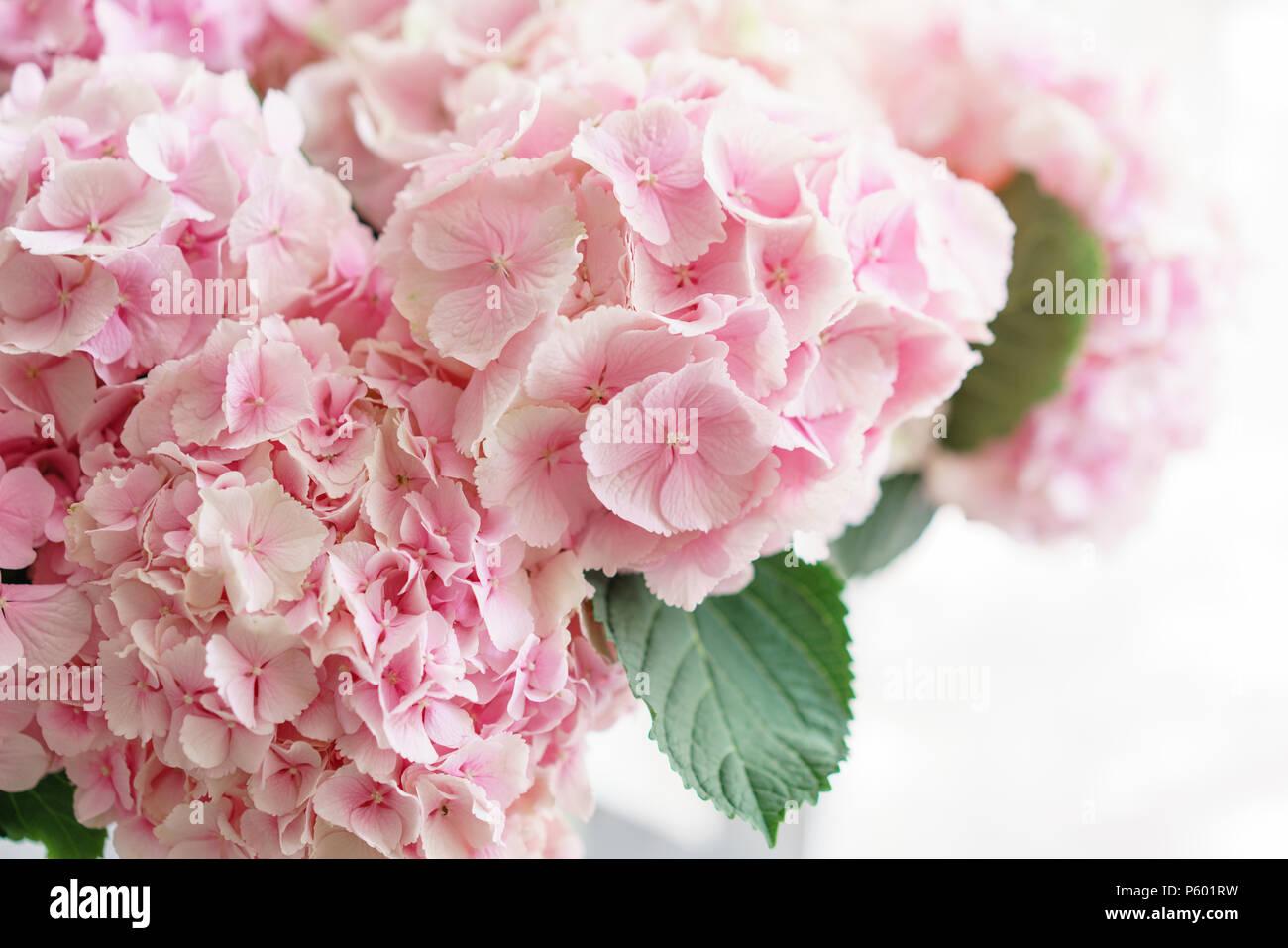 Carta Da Parati Fiori Rosa : Bella hydrangea fiori in un vaso su una tavola . bouquet di luce blu