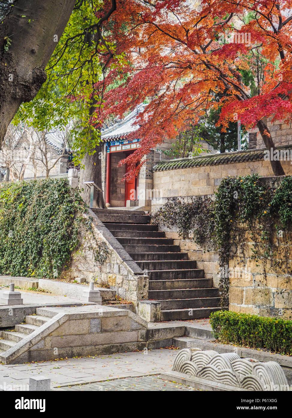 Cortile principale della Taiqing gong o tempio di purezza suprema sulla montagna Lau durante l'autunno Immagini Stock