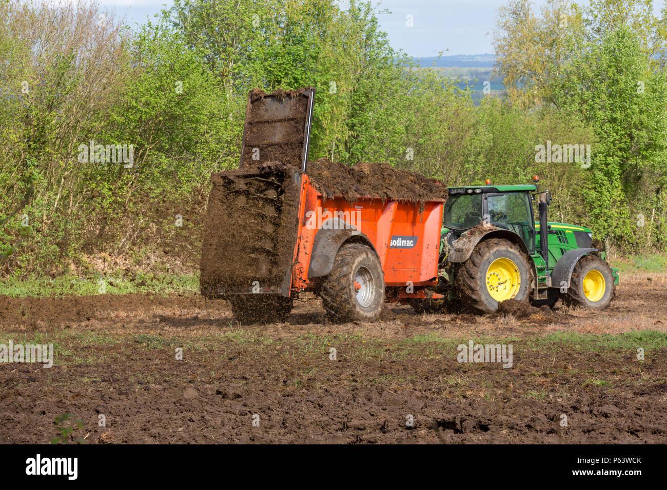 Un agricoltore usando un dispersore per letame dietro il suo trattore per diffondere una miscela organica di letame e di fieno sul suo terreno per la fecondazione. Immagini Stock