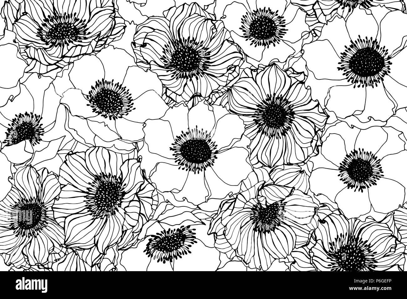 Sfondi fiori bianco e nero