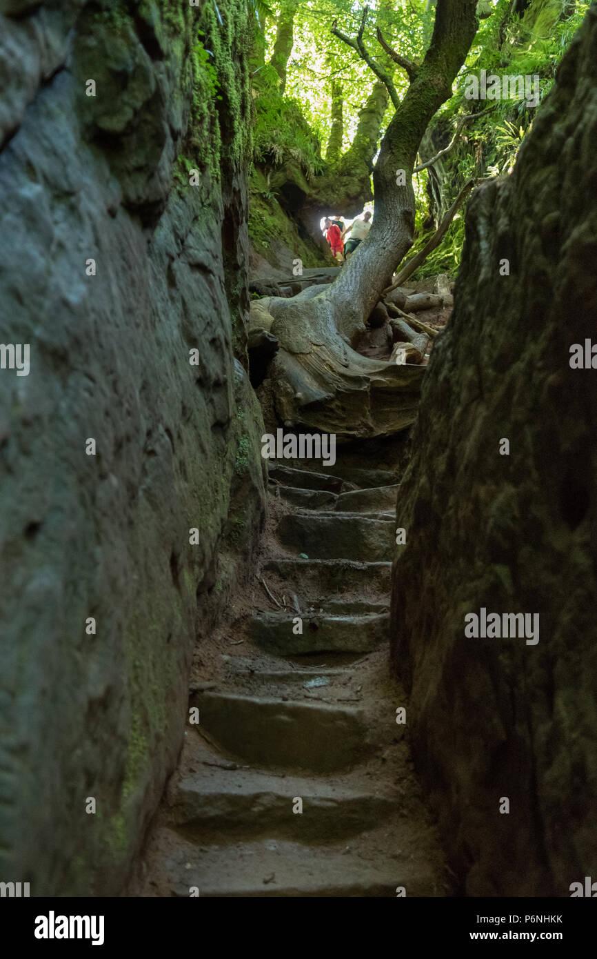 La gente in cima alla ripida passi, noto come Jacobs scaletta che porta giù in Finnich Glen, a Killearn, Scotland, Regno Unito Immagini Stock