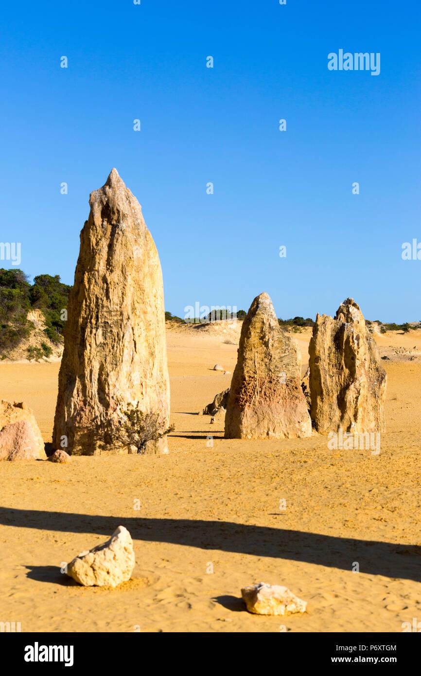Deserto dei Pinnacoli, Australia occidentale Immagini Stock