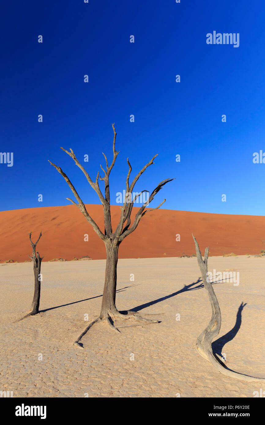 La Namibia, Namib Naukluft National Park, Sossussvlei dune di sabbia Immagini Stock