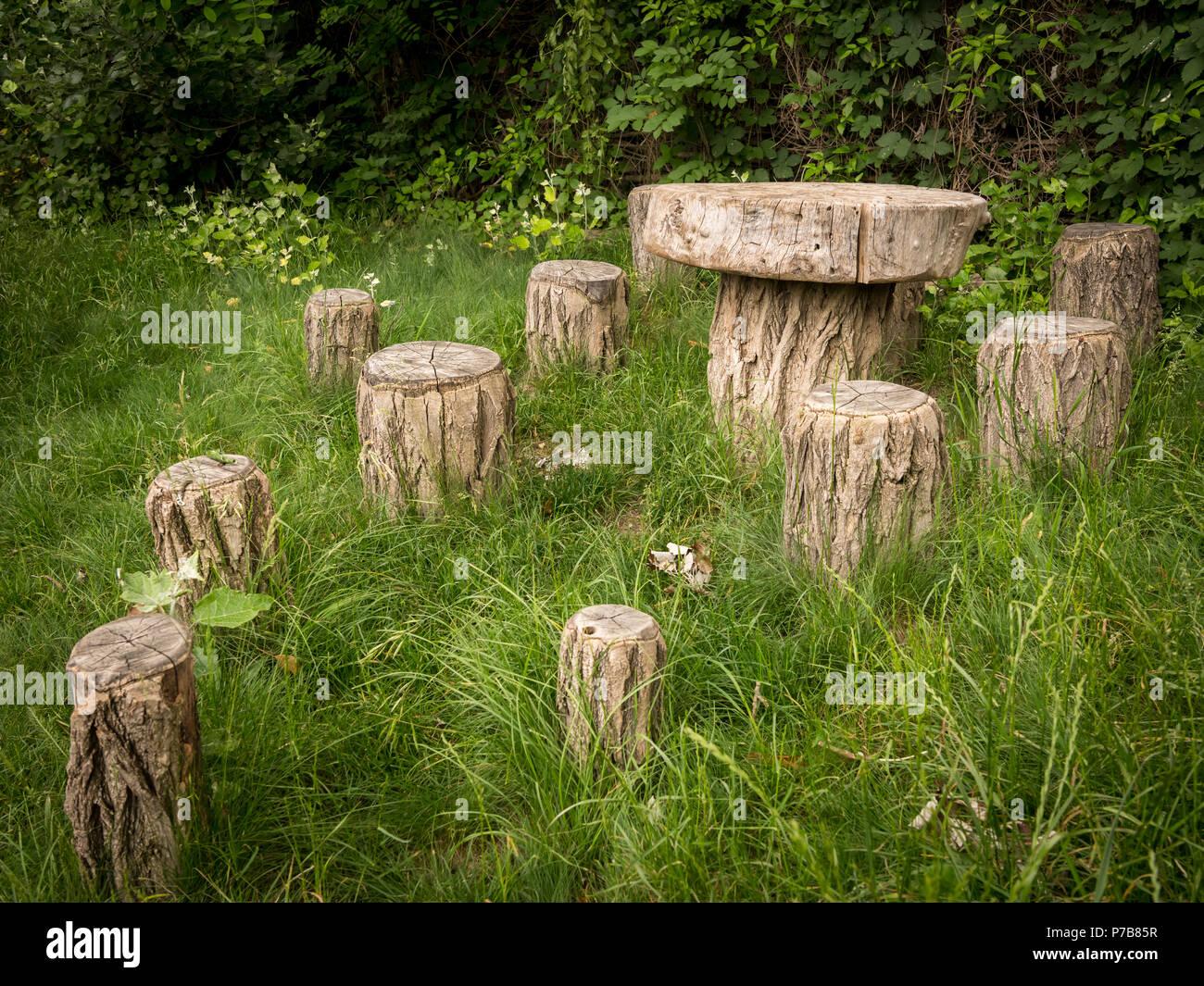 Piccolo centro rurale di tavolo e sedi fatte di tronchi di