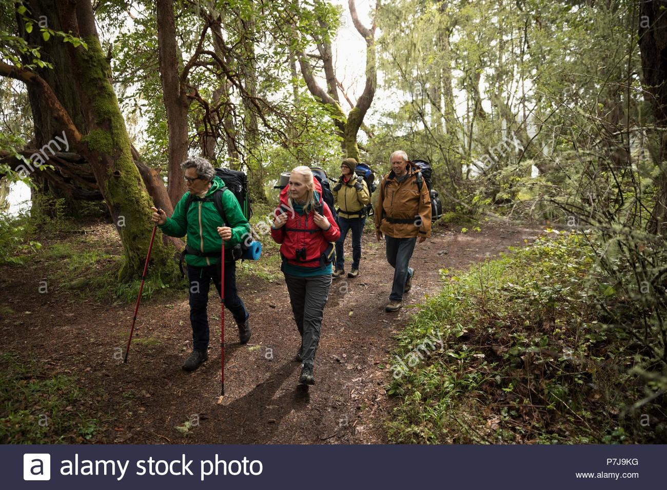Attiva amico senior escursionisti escursioni nei boschi Foto Stock