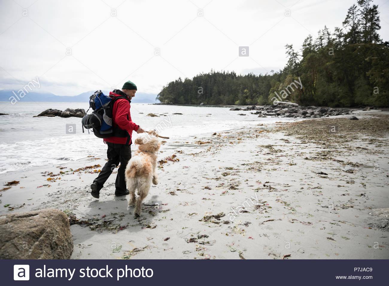 Uomo con cane backpacking sulla spiaggia robusto Immagini Stock
