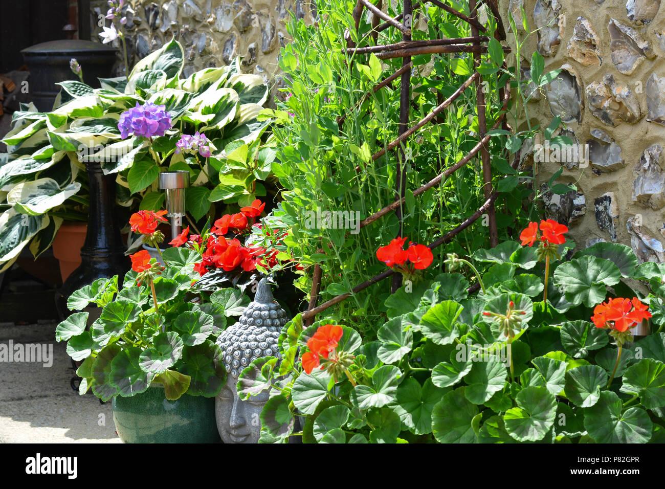 Piante E Fiori Da Giardino.Colore Grigio Testa Di Buddha Tra Fiori Da Giardino E Vasi Per