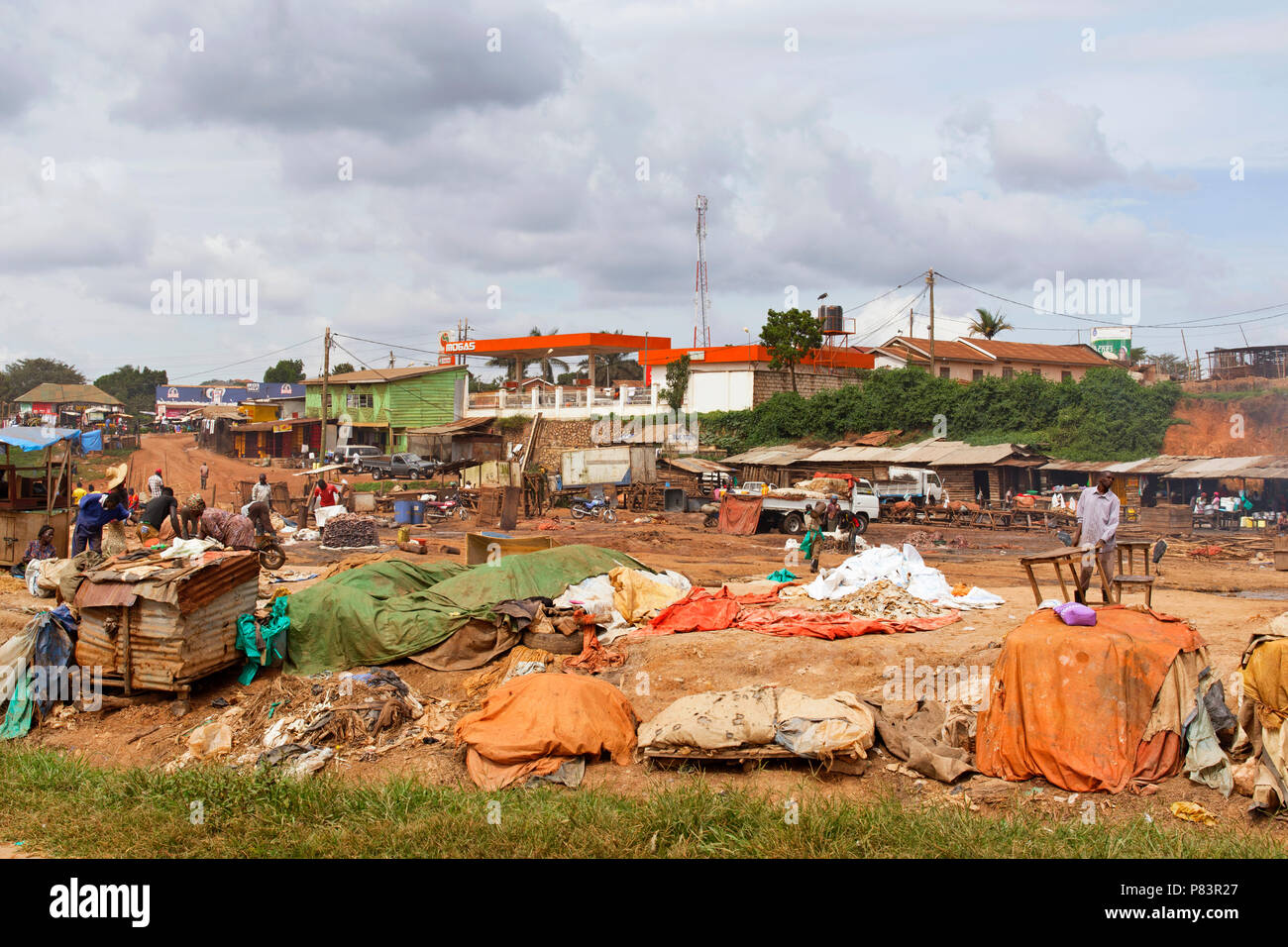 Rifiuti di pesce Lavorazione sito vicino a Kampala, Uganda, Africa orientale Immagini Stock