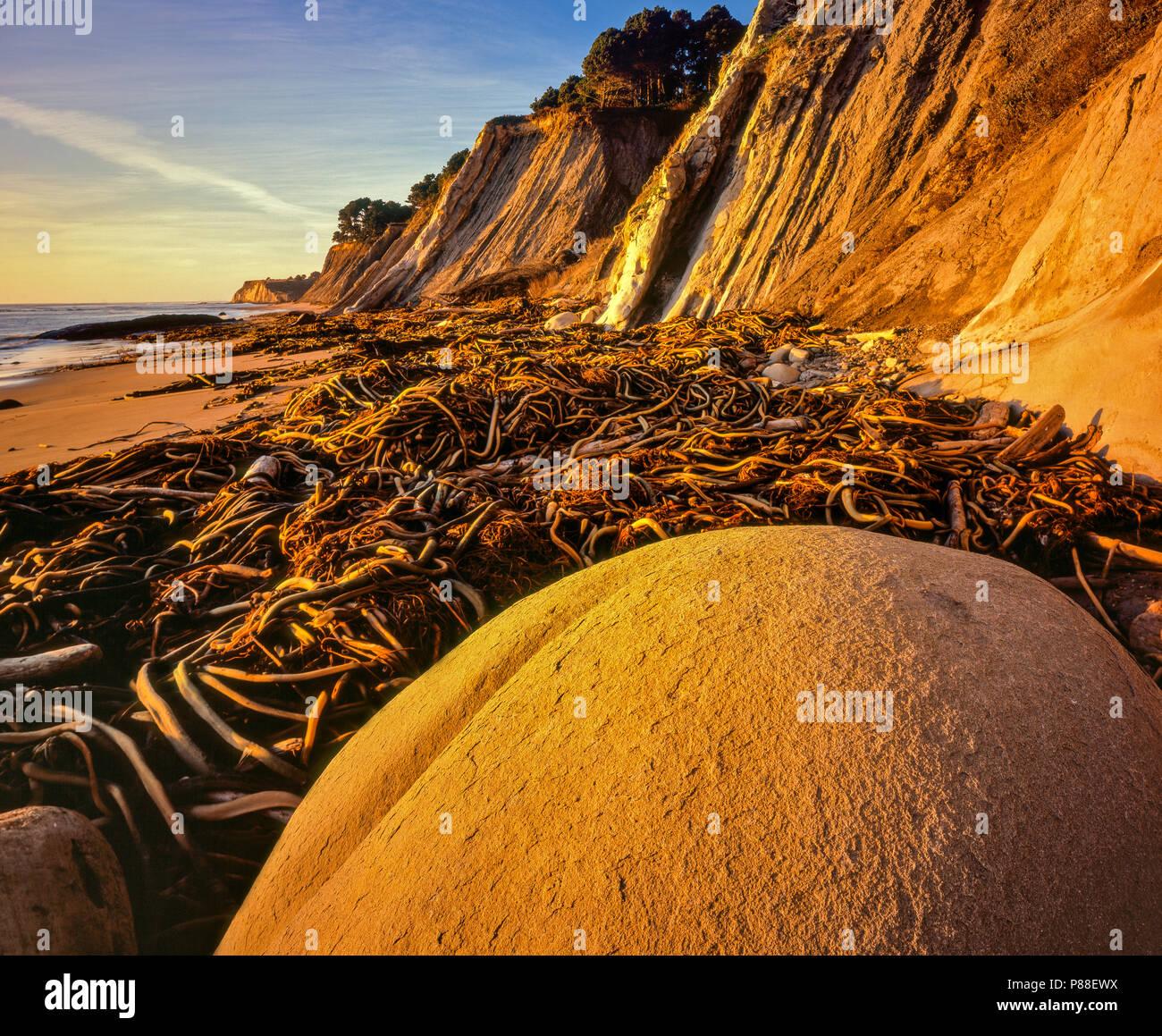 Palla da Bowling Beach, goletta Gulch State Beach, coste, Mendocino County, California Immagini Stock