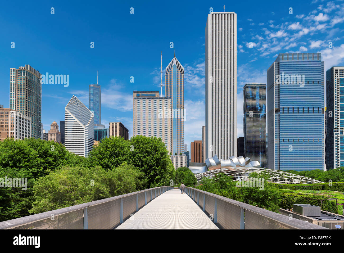 Chicago Downtown skyline Immagini Stock