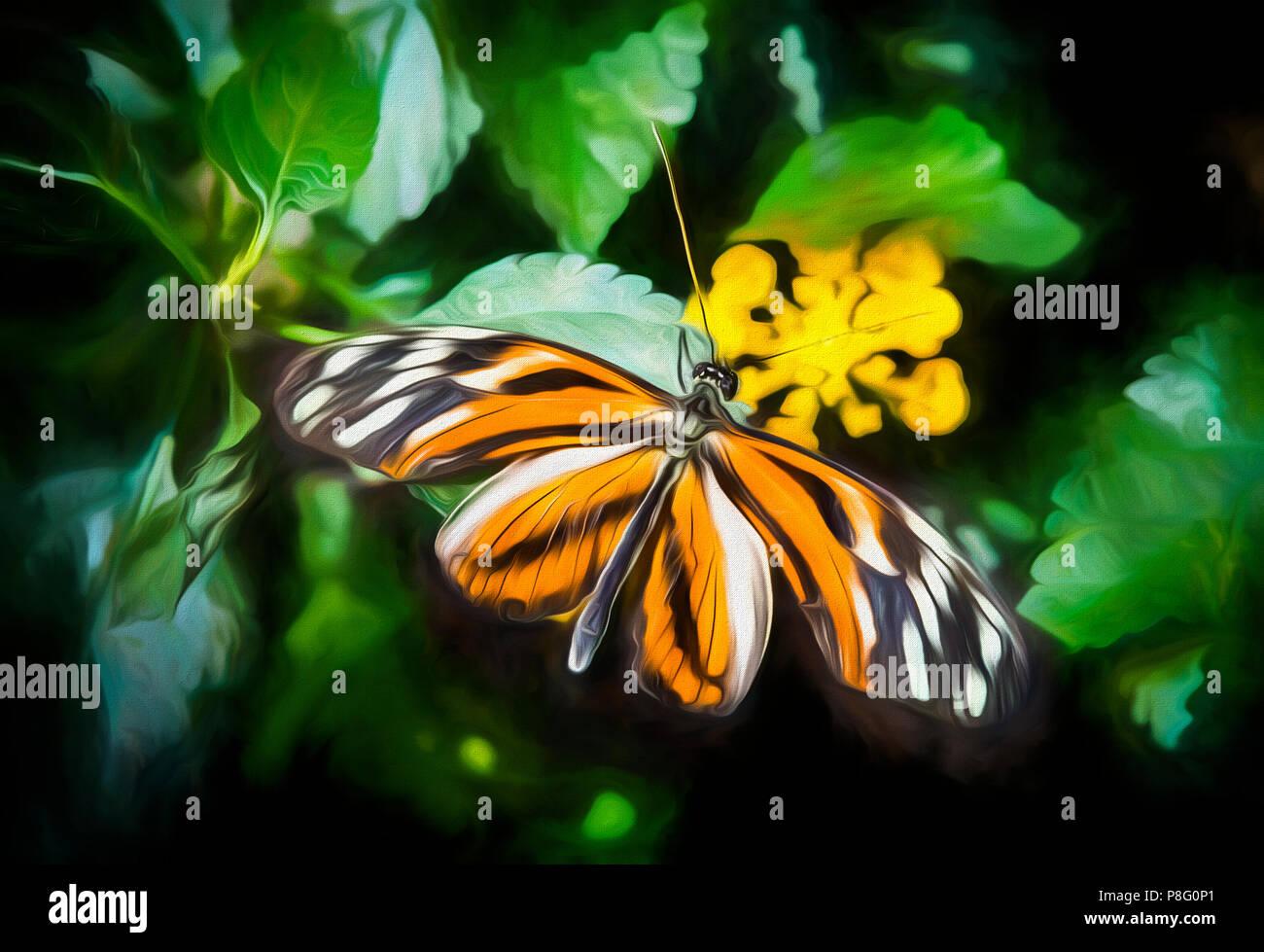 Farfalle nel mio stomaco datazione