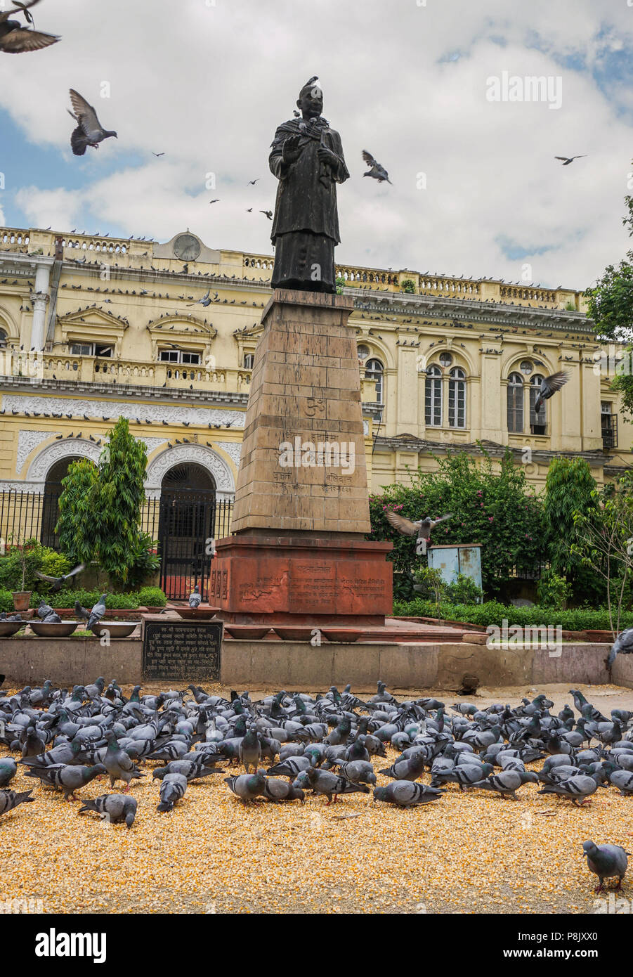 Delhi, India - 26 luglio 2015. Il Mahatma Gandhi statua nel centro di Delhi, India. Gandhi è ufficiosamente chiamato il padre della nazione indiana. Immagini Stock