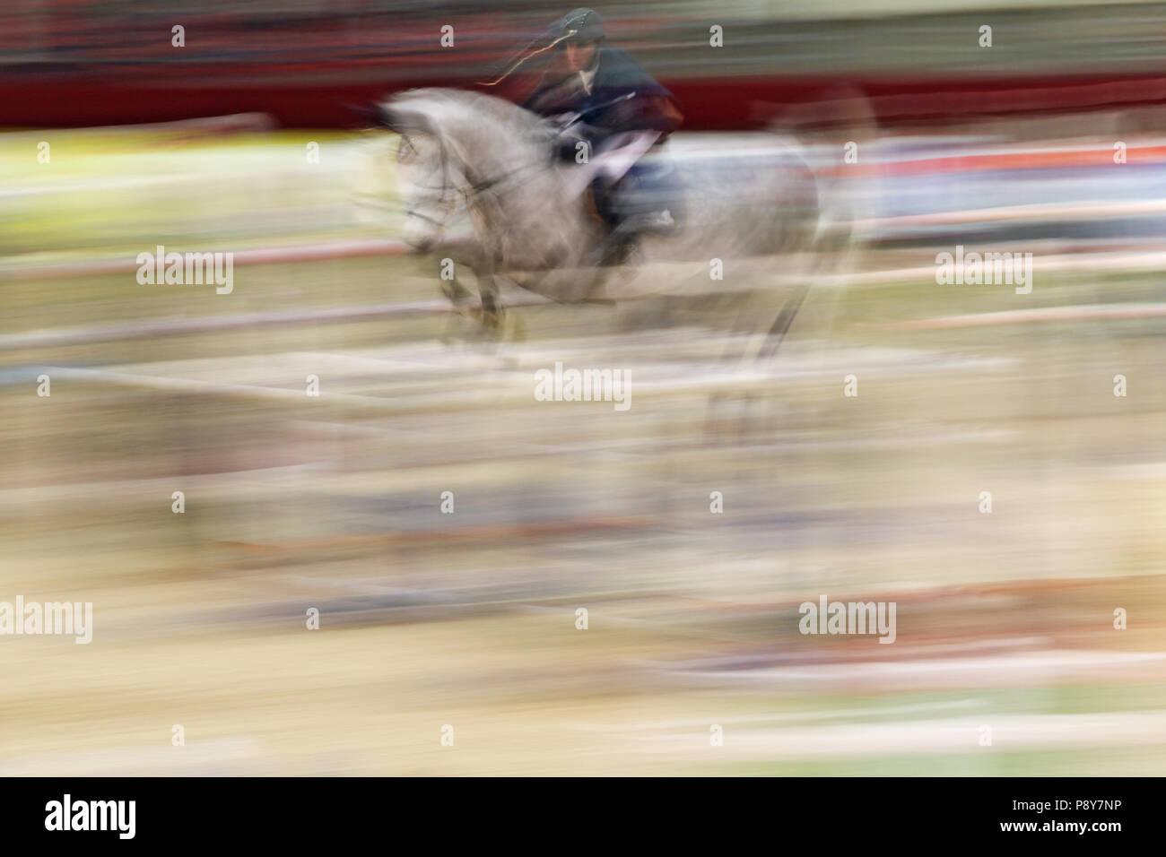 Neustadt (Dosse), dynamics, cavallo e cavaliere jumping show jumping su un oxer Immagini Stock