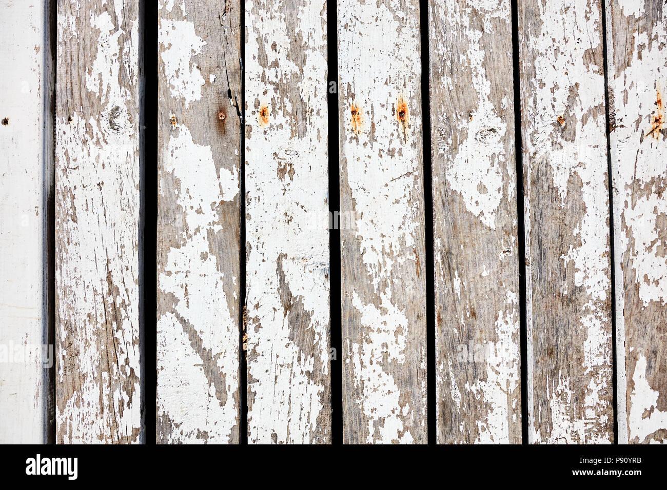 Assi Di Legno Rustiche : Childrens blocchi ortografia autunno su assi di legno rustico la