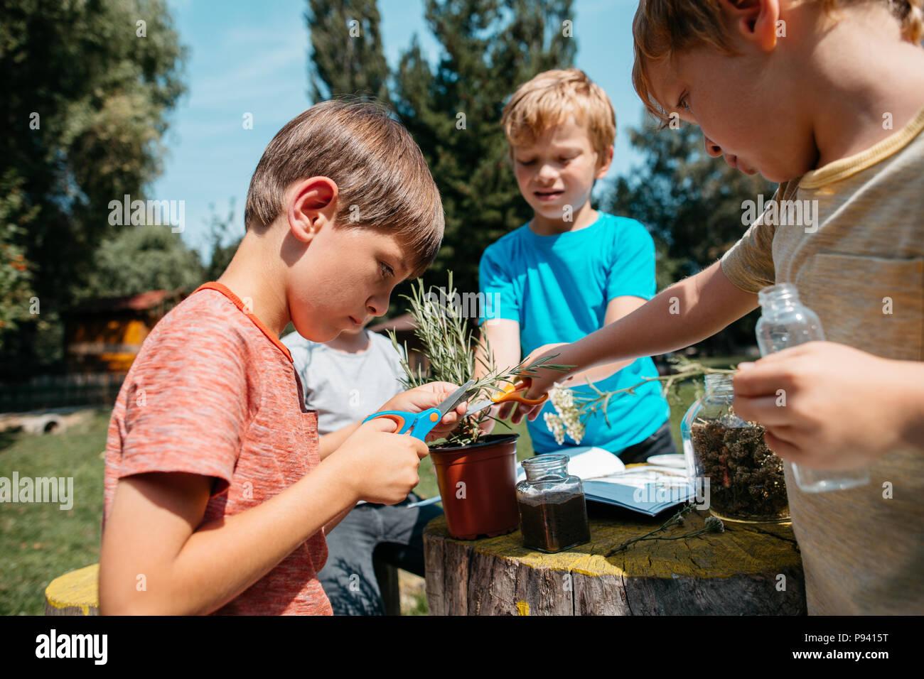 Studenti primari ad esplorare le erbe e le piante in un giardino della scuola. Bambini imparare insieme a una scienza naturale di classe. Immagini Stock