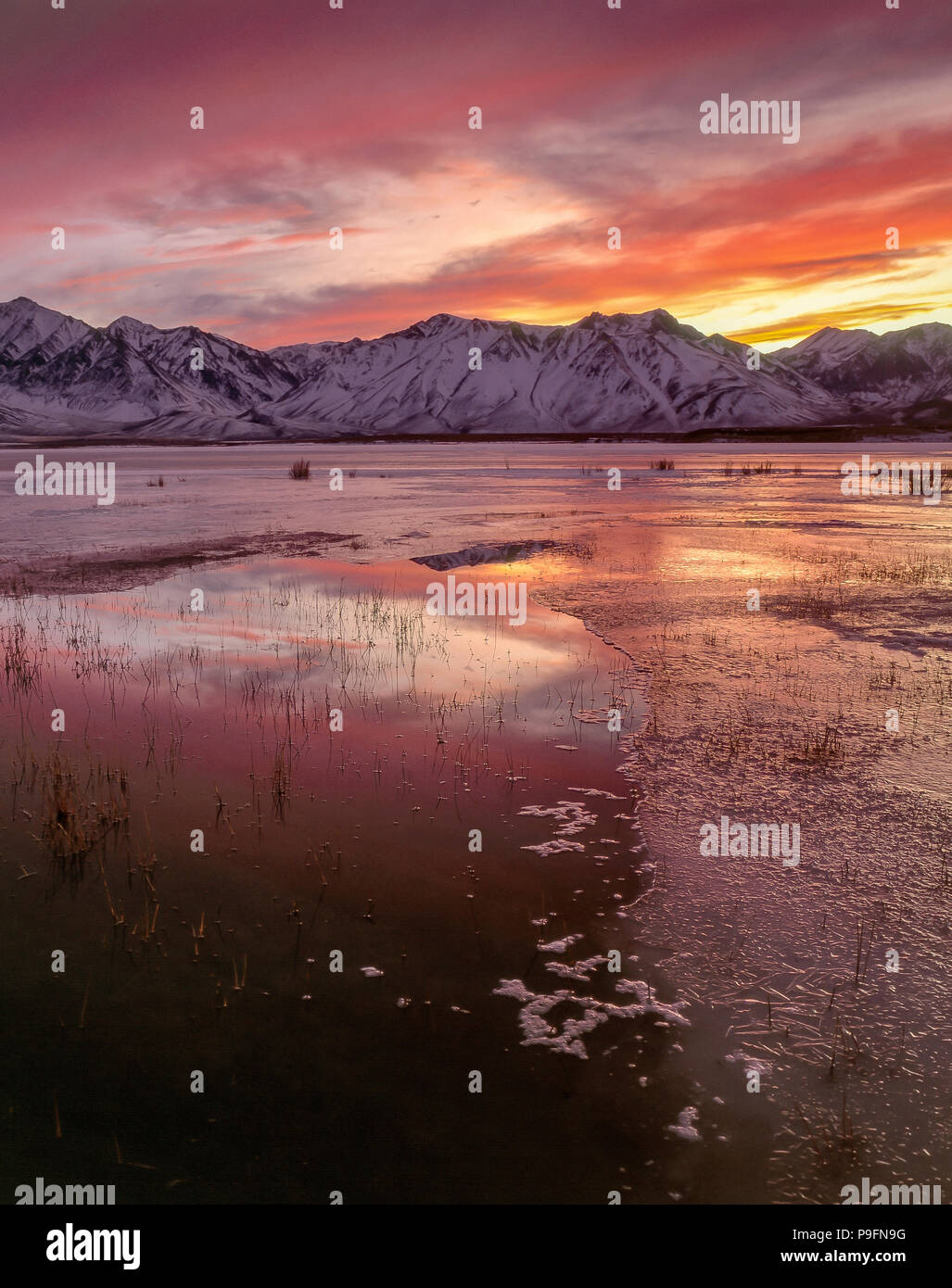 Tramonto, Crowley Lago, Inyo National Forest, Sierra orientale, California Immagini Stock