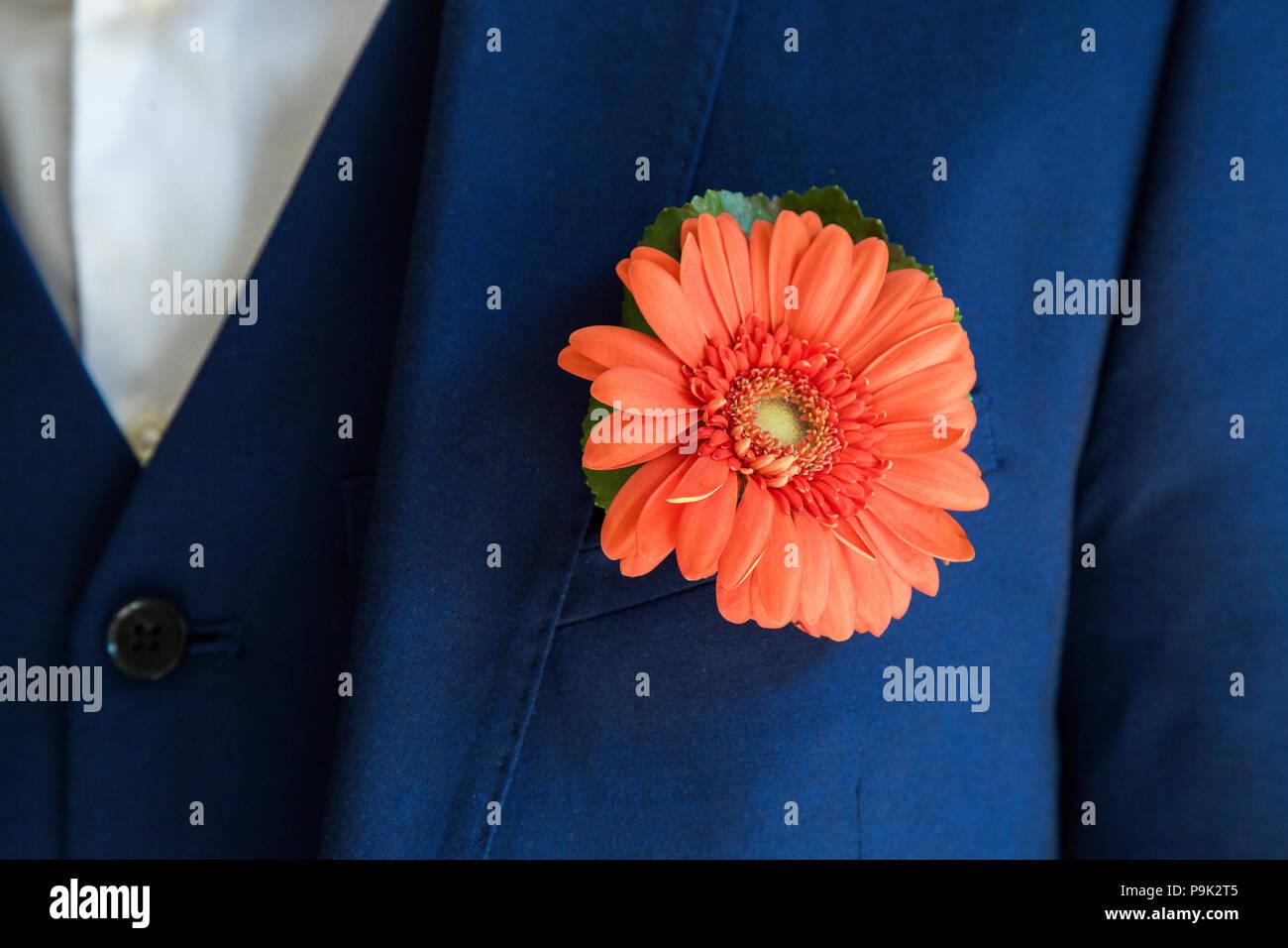 Lo sposo con crisantemo boutonniere sul matrimonio Immagini Stock