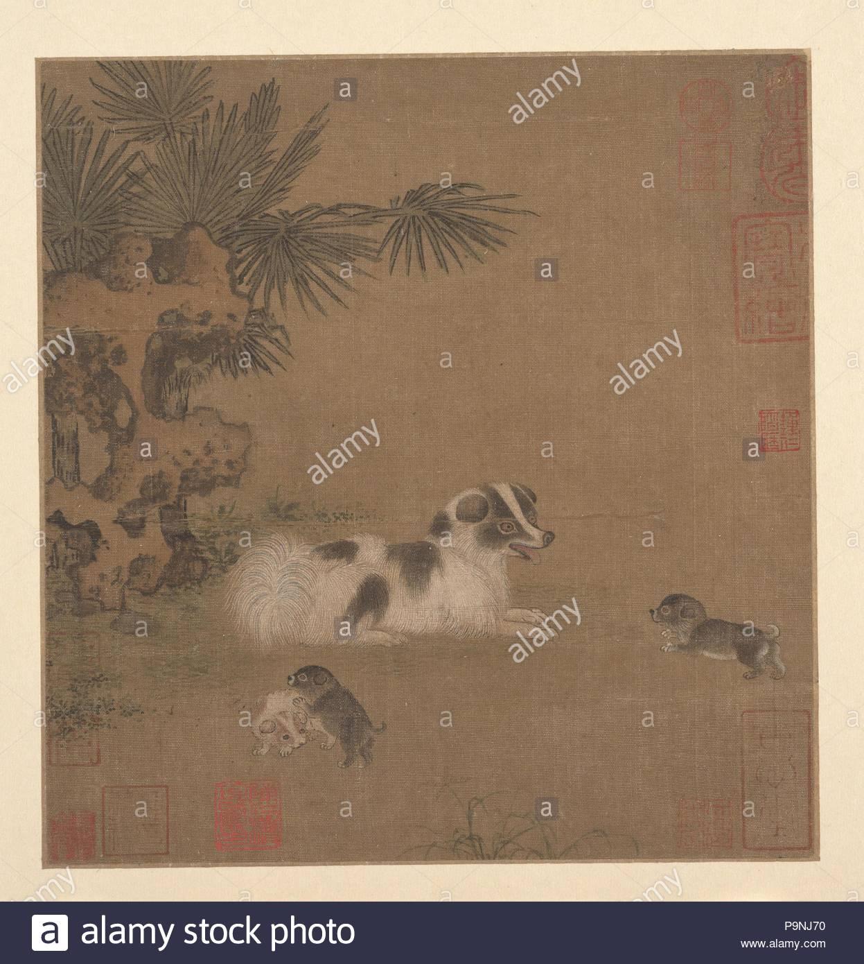 Cuccioli Giocando Accanto A Un Albero Di Palma E Giardino Di Roccia