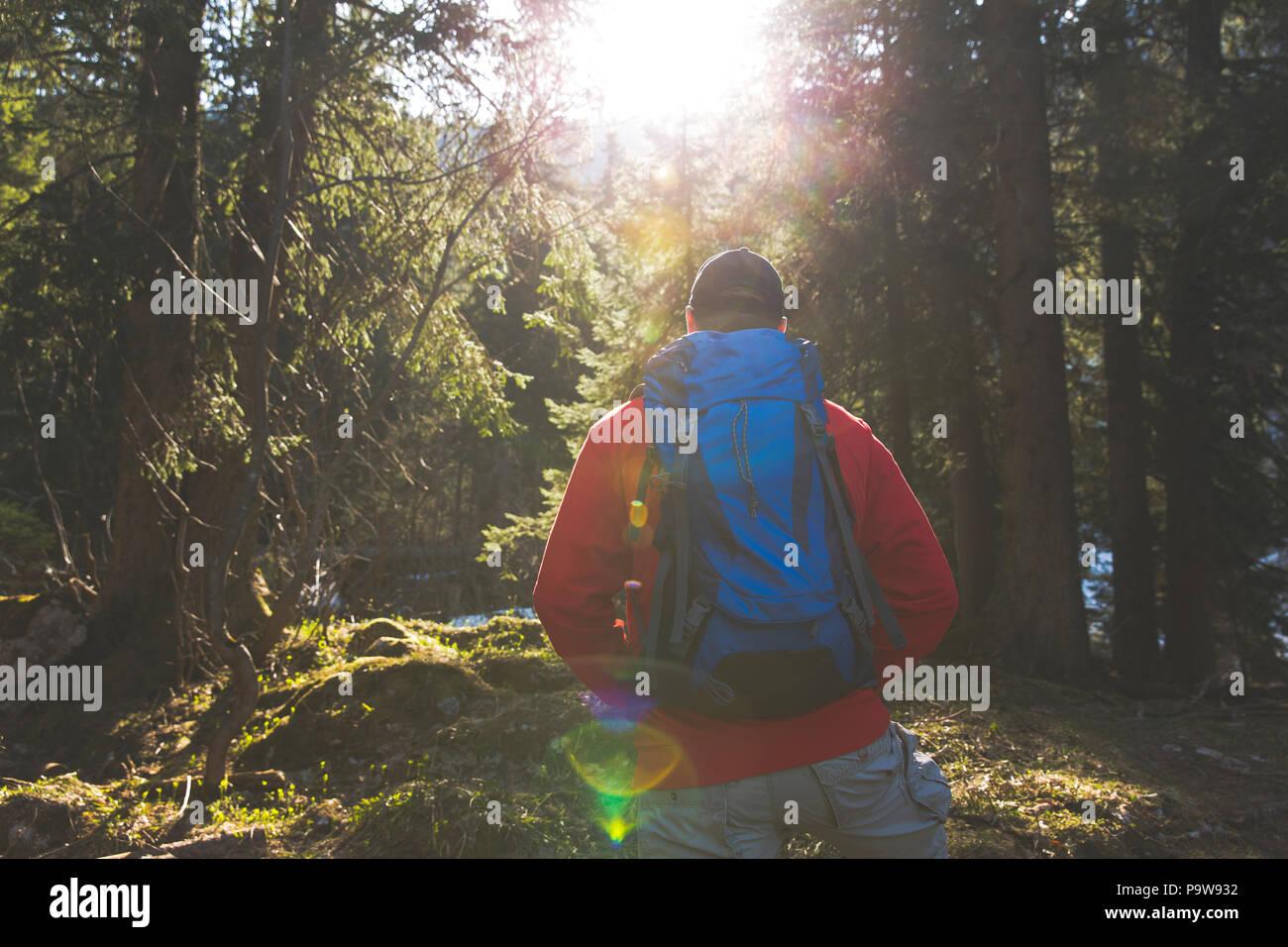 Escursionismo uomo con zaino blu e maglione rosso nella foresta Immagini Stock