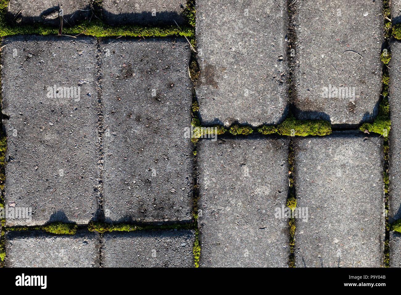 Parte della vecchia pavimentazione di piastrelle di calcestruzzo