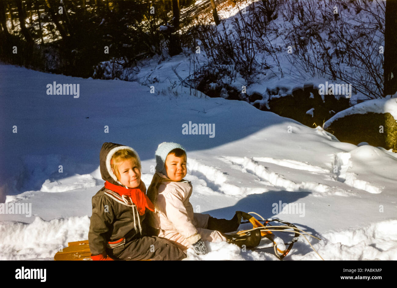 Anni Cinquanta giovani bambini indossare le tute da sci seduti sulla slitta  di legno nel giardino 5c1d9f5d3a25