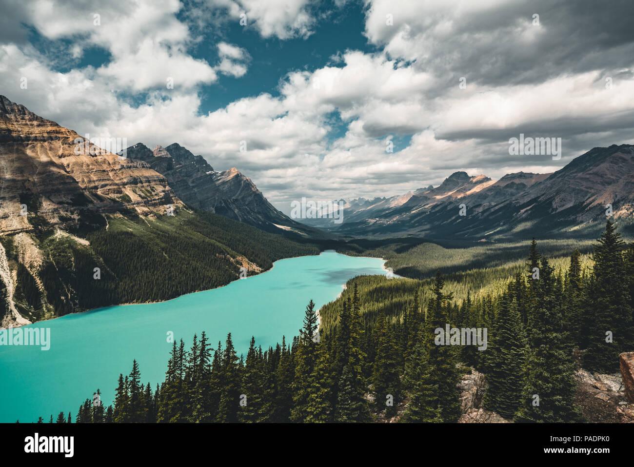 Vista sul Lago Peyto, Il Parco Nazionale di Banff in Canada Immagini Stock