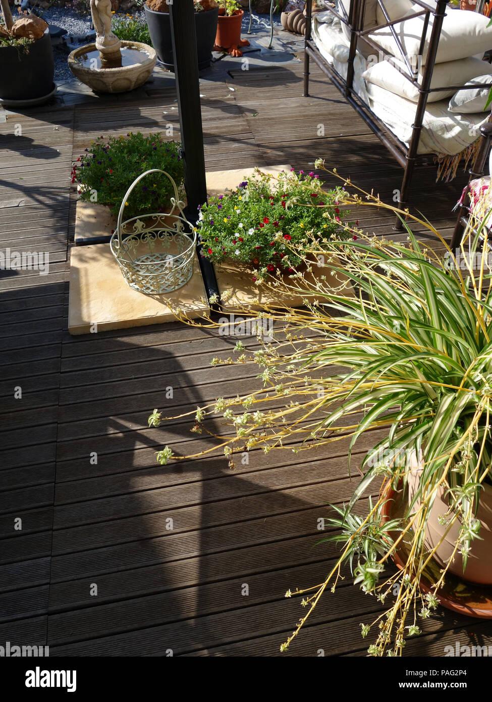 Avvicinare la vista del cortile e il terrazzo di un meraviglioso francese Casa privata nei pressi di Magalas nella région Languedoc-Roussillon, Francia Immagini Stock