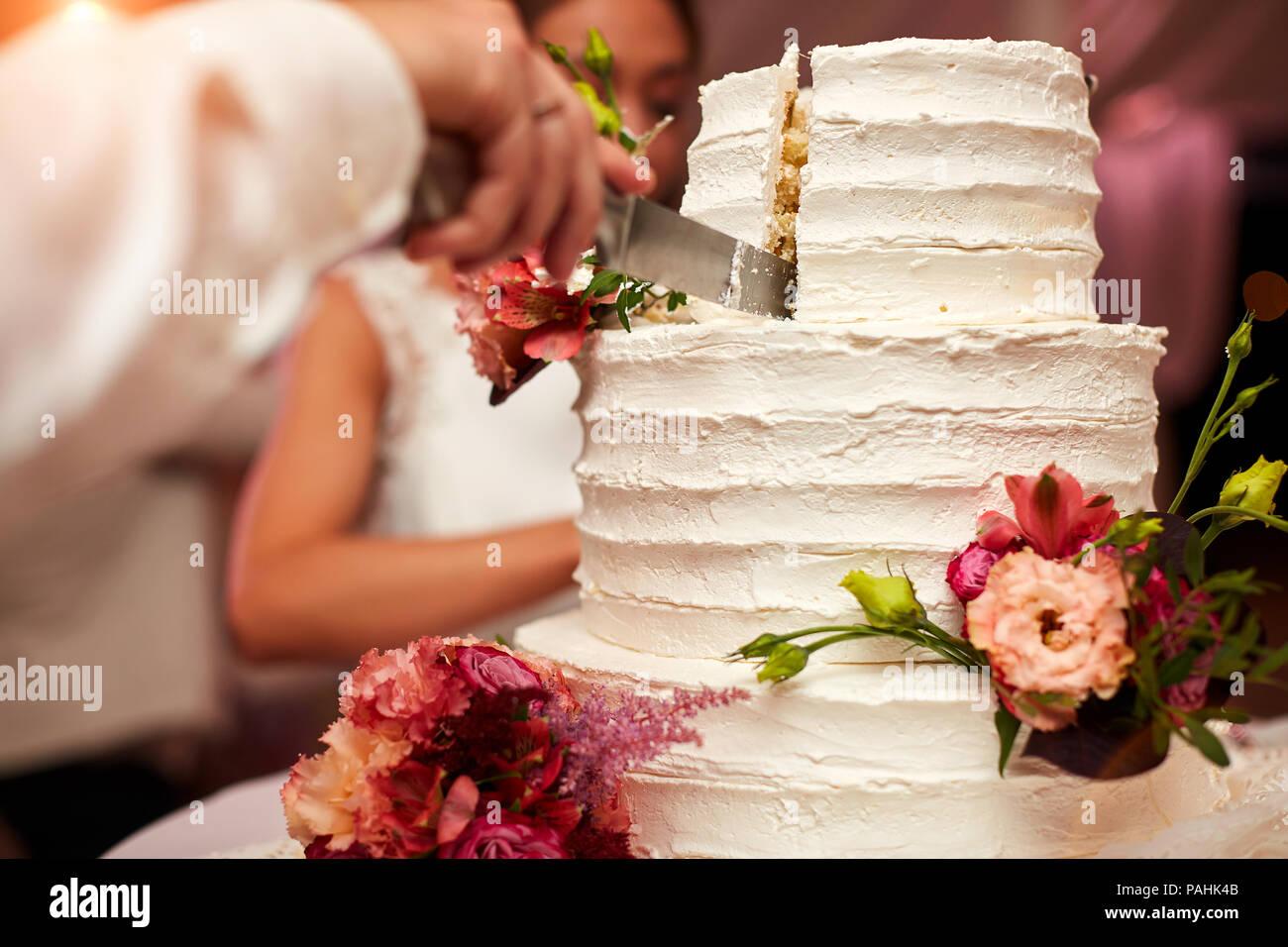 Lo sposo taglia la torta di nozze Immagini Stock