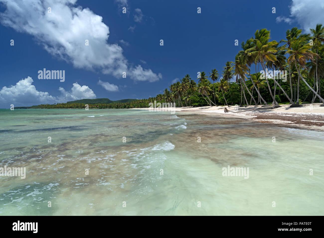 Tropical spiaggia dei Caraibi nella Repubblica Dominicana Immagini Stock