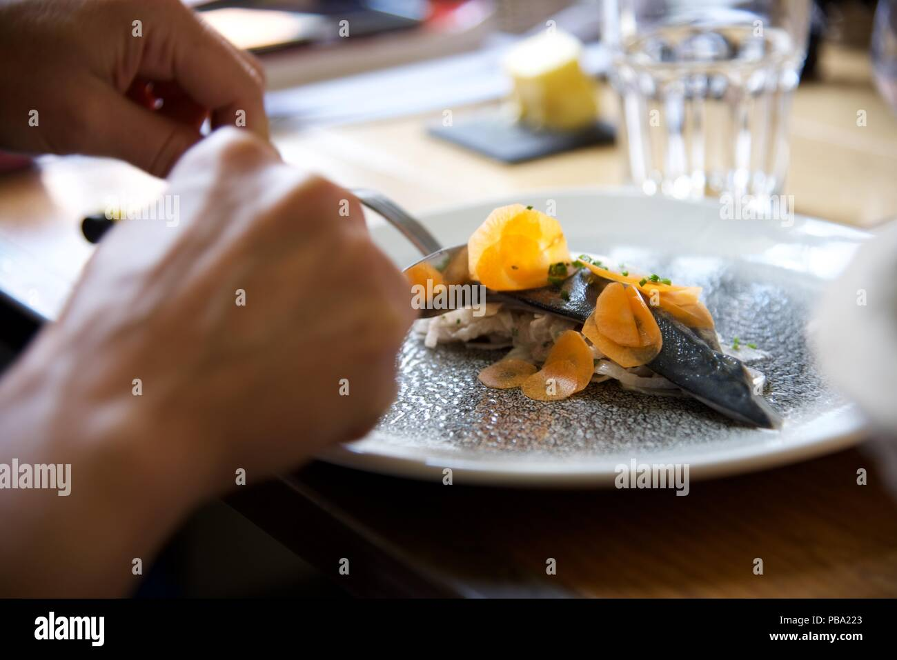Sgombri starter: una cena francese interviene ad un antipasto di sgombro marinati su letto di sedano rapa con carote tagliate a fette sottili Immagini Stock