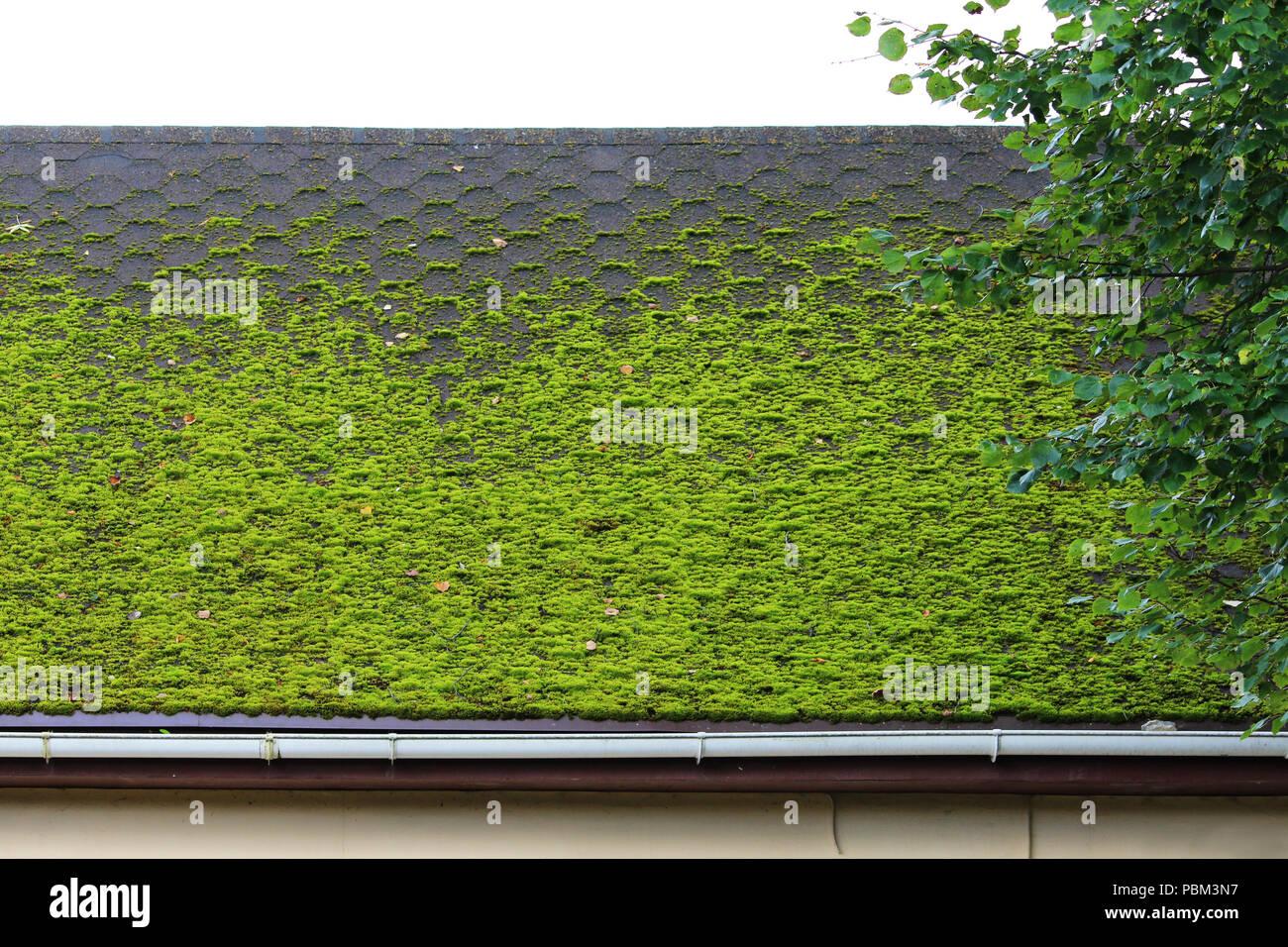 Brown piastrella flessibile sul tetto della casa splendidamente