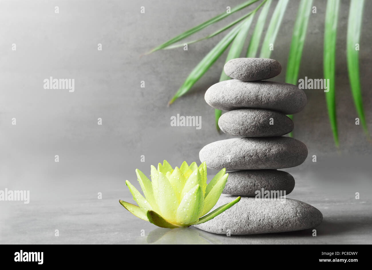 Pietre, Bilanciamento Bianco fiore di lotus e verde foglia di palma. Zen e concetto di spa. Foto Stock