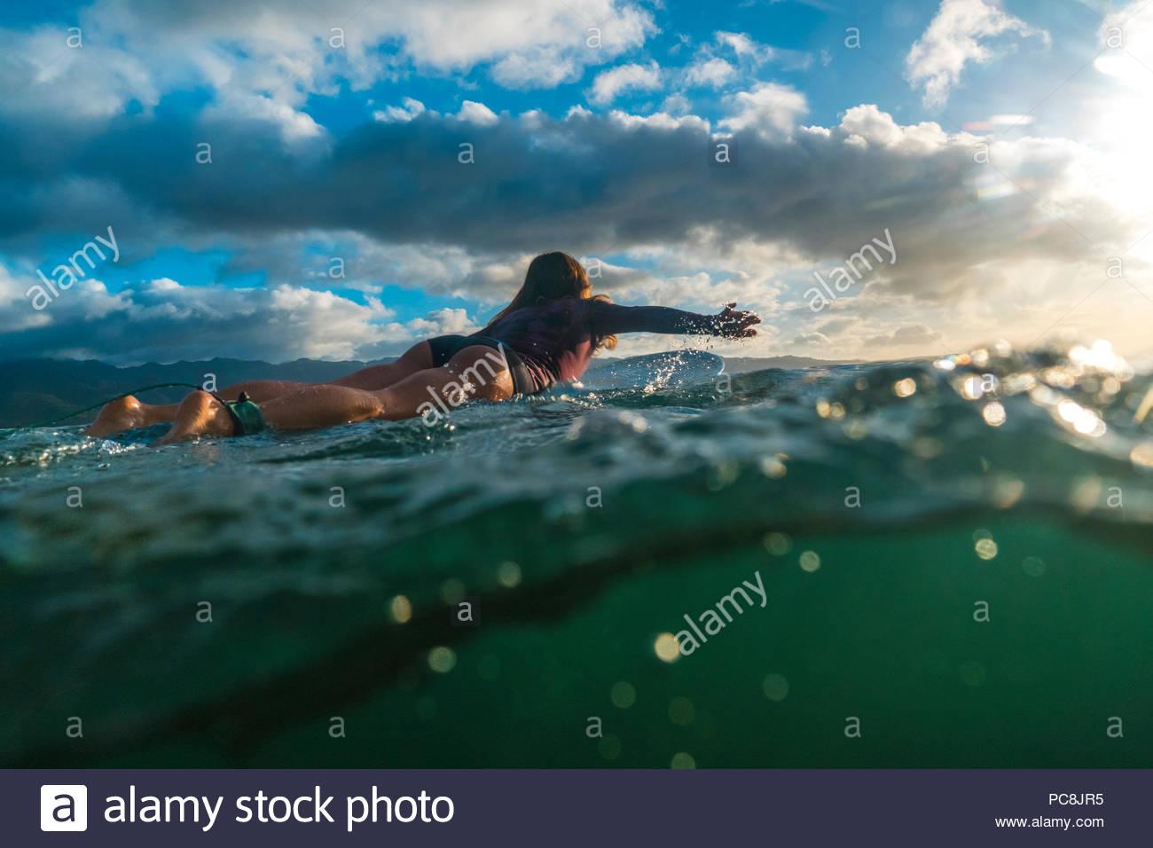 Una donna surf sulla sponda nord delle Hawaii. Immagini Stock