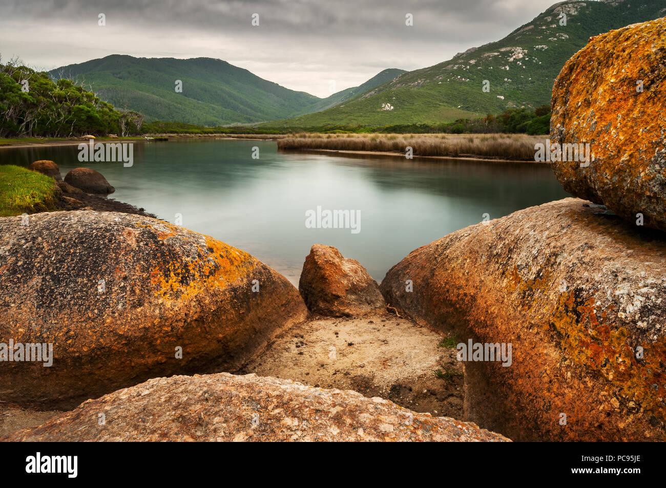 Colorato di lichene, rocce coperte al fiume di marea in Wilsons Promontory National Park. Immagini Stock