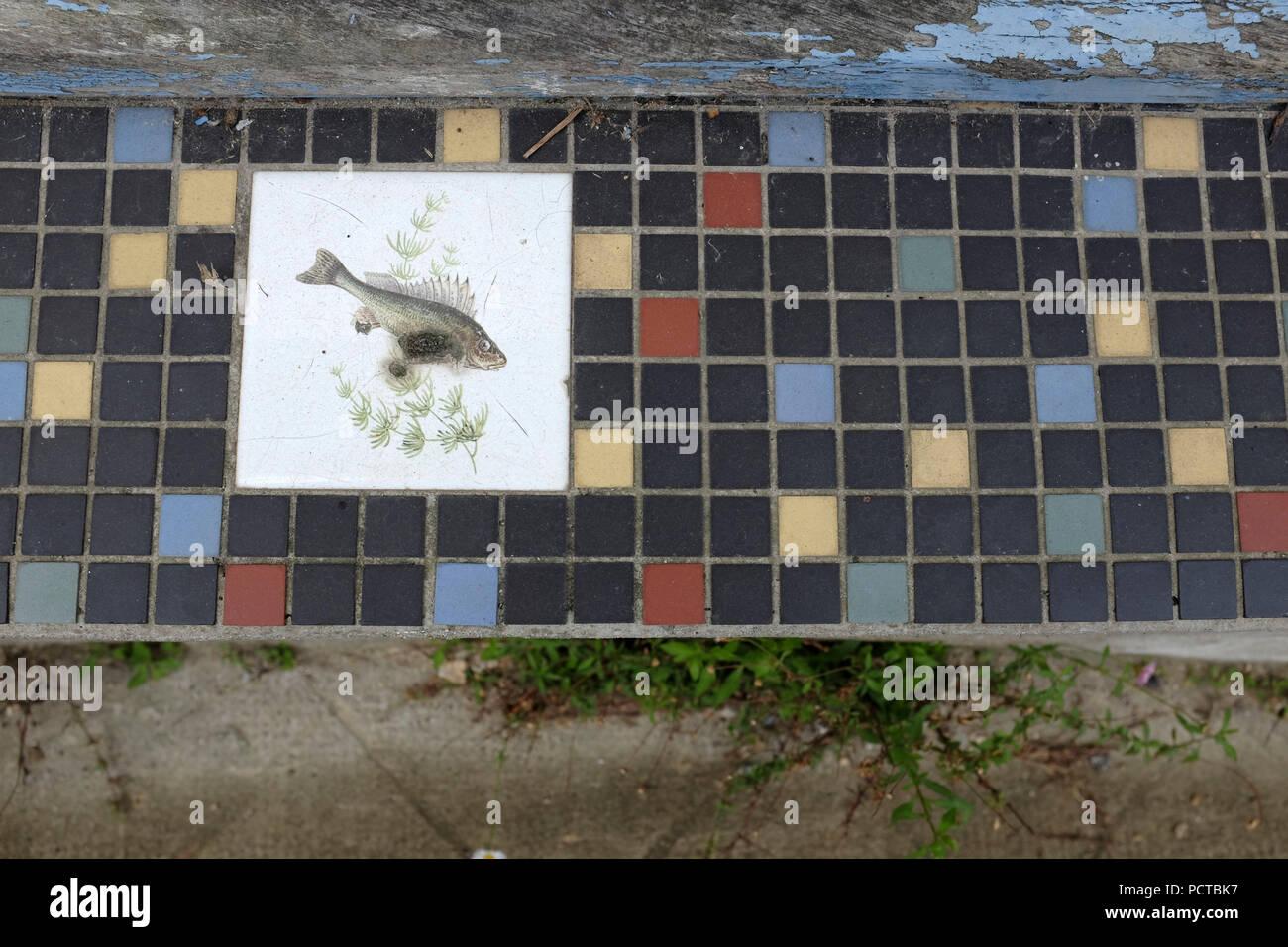 Piastrelle decorative con motivo di pesce foto immagine stock