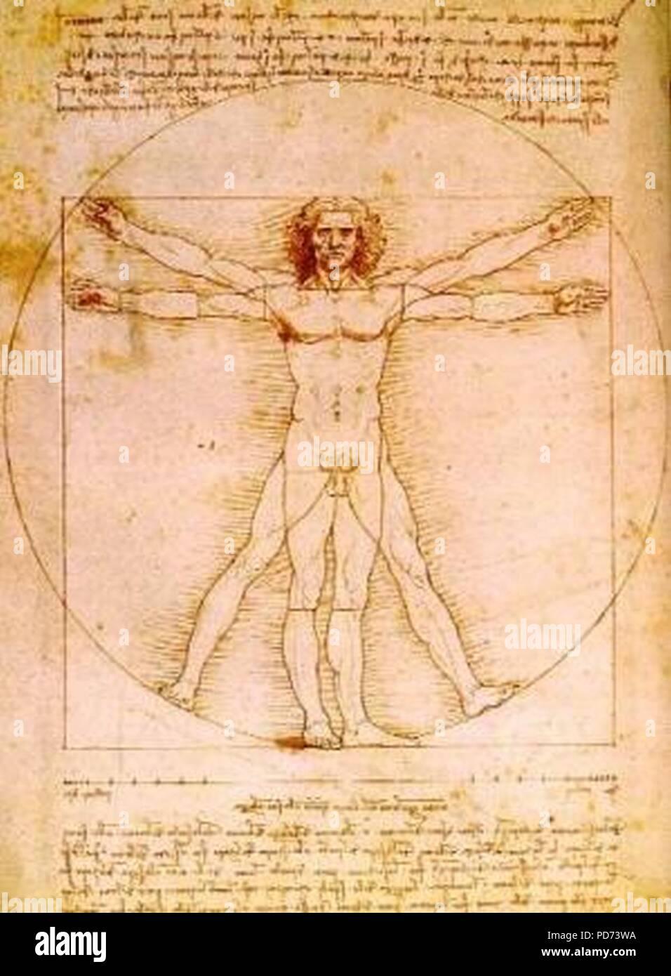 Anatomia homem Leonardo. Immagini Stock