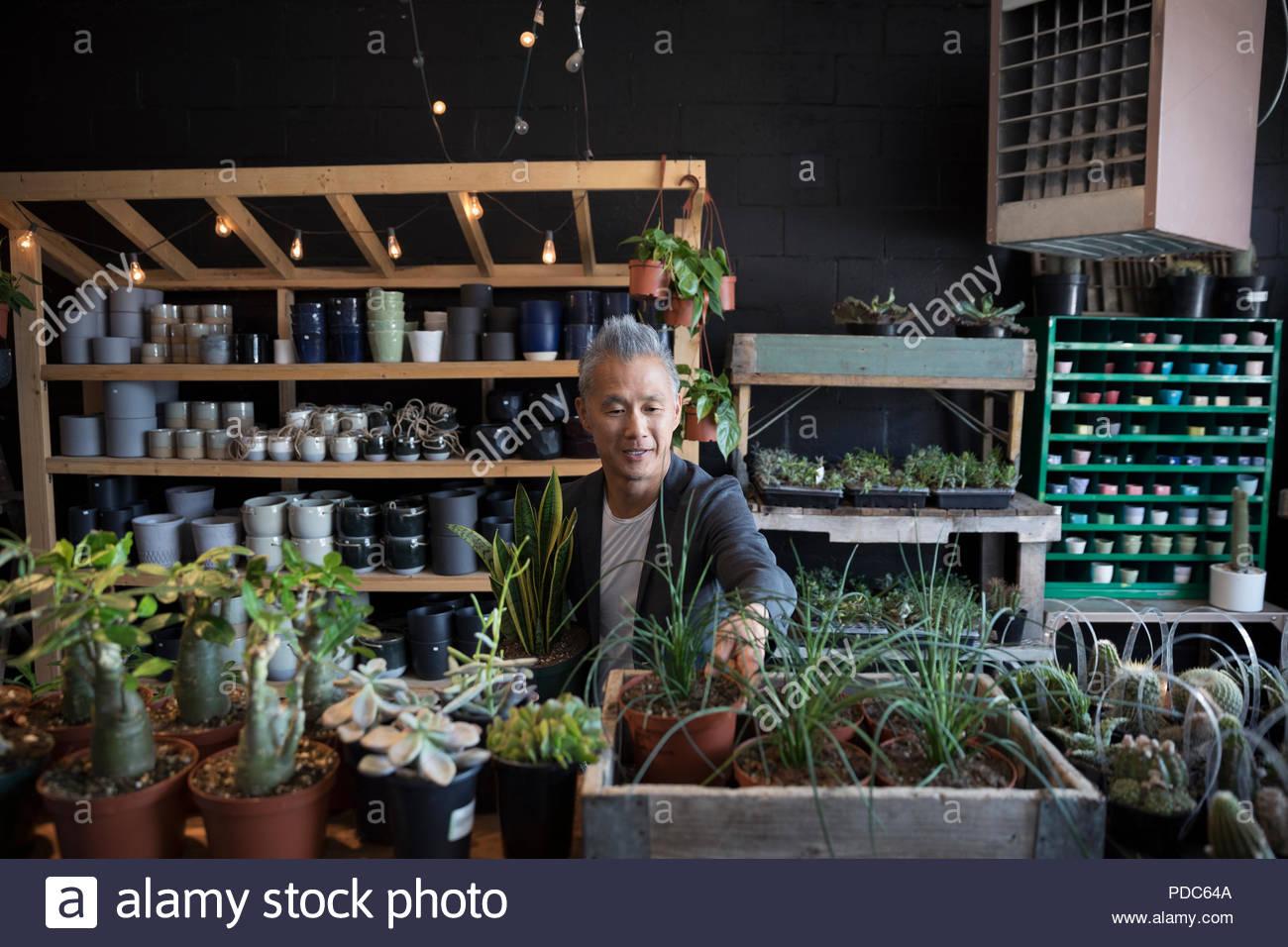 Uomo maturo shopping nel negozio di vegetali Immagini Stock