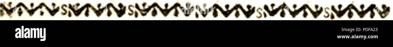 79 Bettinelli elemento grafico 2 Immagini Stock