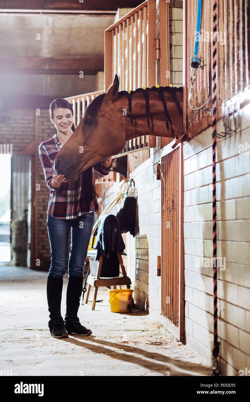 Caring horsewoman proveniente da stabile per cavallo di pulizia Immagini Stock