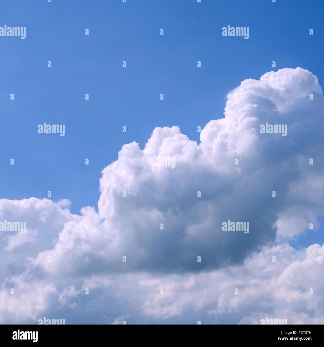 Bianchi E Soffici Nuvole Nel Vasto Cielo Blu Natura Astratta Sfondo