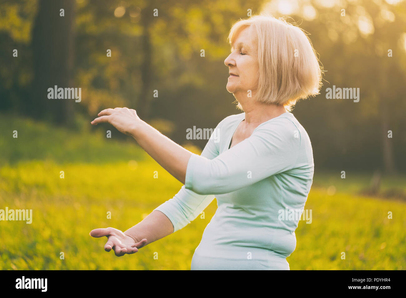 Senior donna gode di esercizio Tai Chi nella natura.Immagine è intenzionalmente tonica. Immagini Stock
