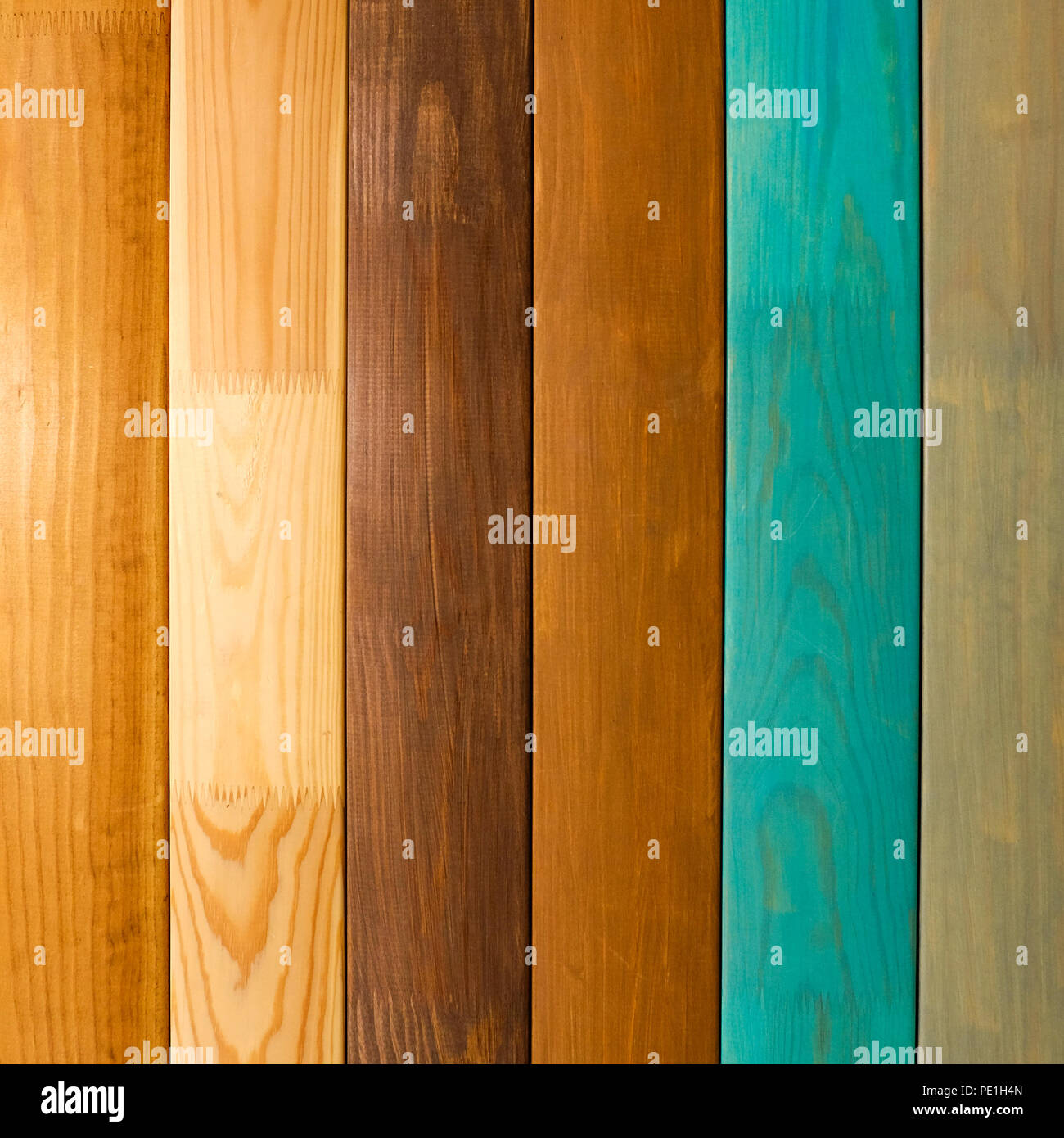 Scheda lucidato. Diversi tipi di legno. Quercia bianca. Bog ...