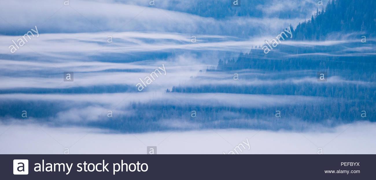 Nebbia di mattina sulle colline, nei pressi di San Pietroburgo, all'interno del passaggio, Alaska. Immagini Stock