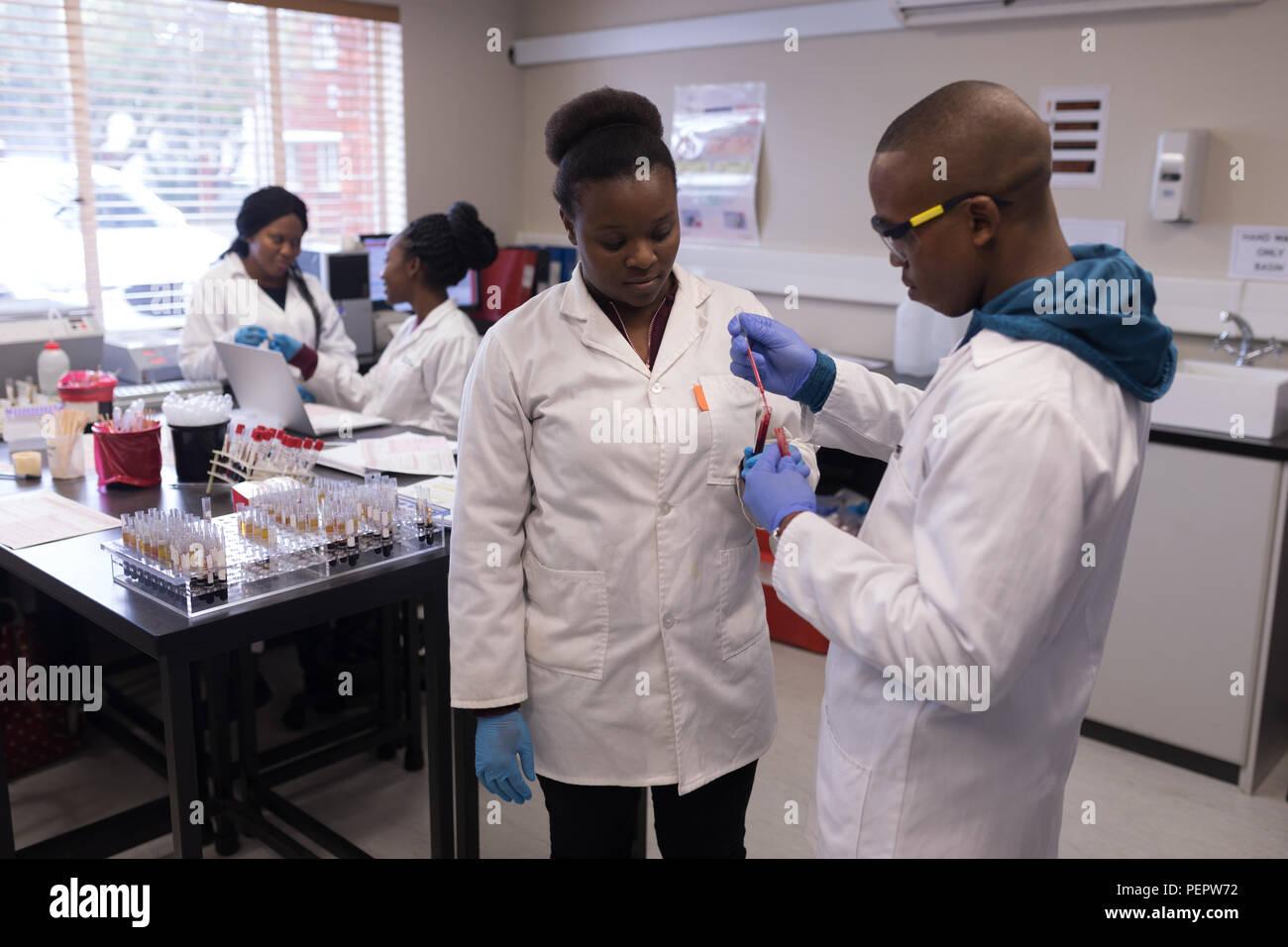 Tecnici di laboratorio analisi campione di sangue Foto Stock