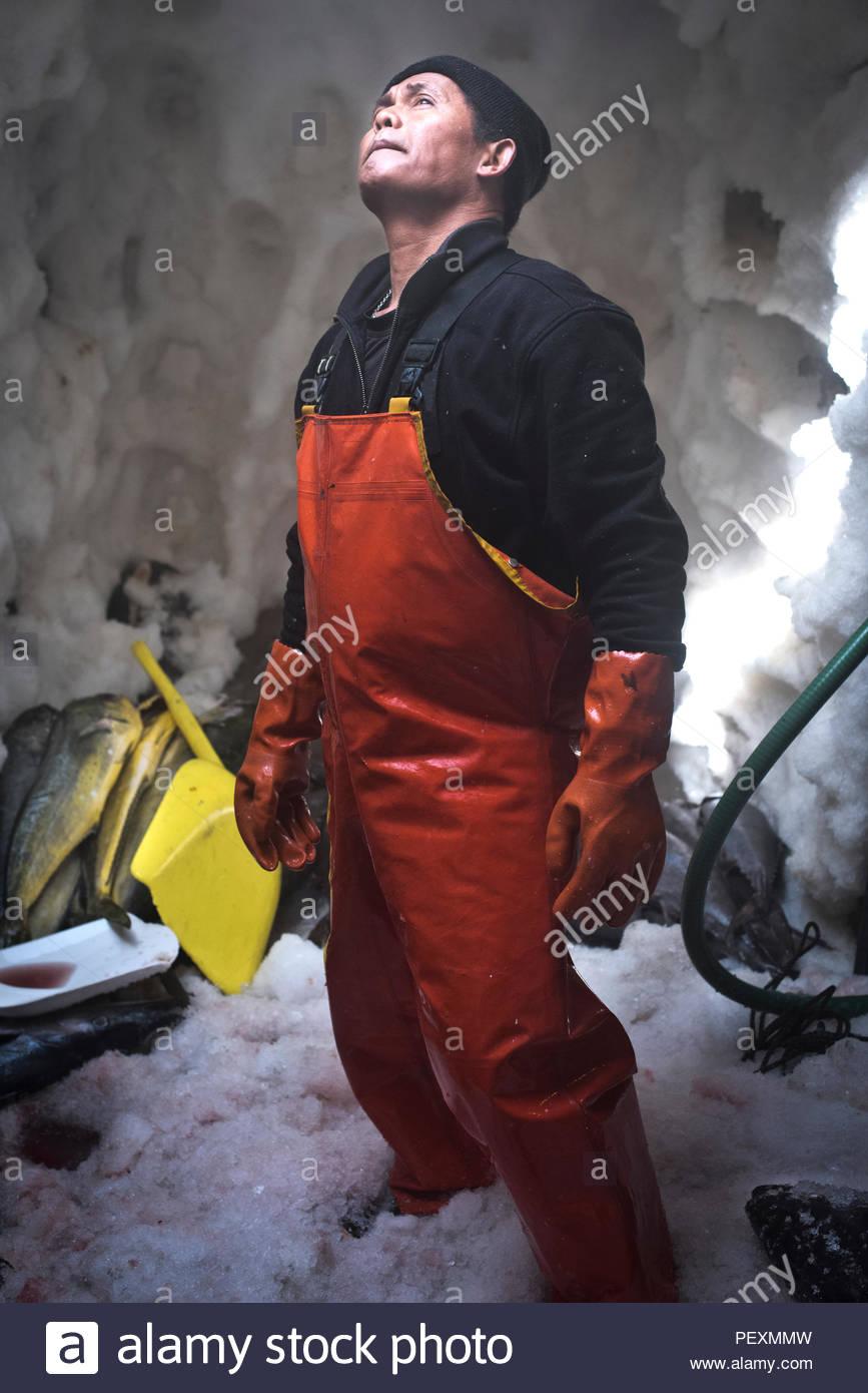 Ritratto di marinaio in congelatore in barca da pesca, San Diego, California, Stati Uniti d'America Immagini Stock